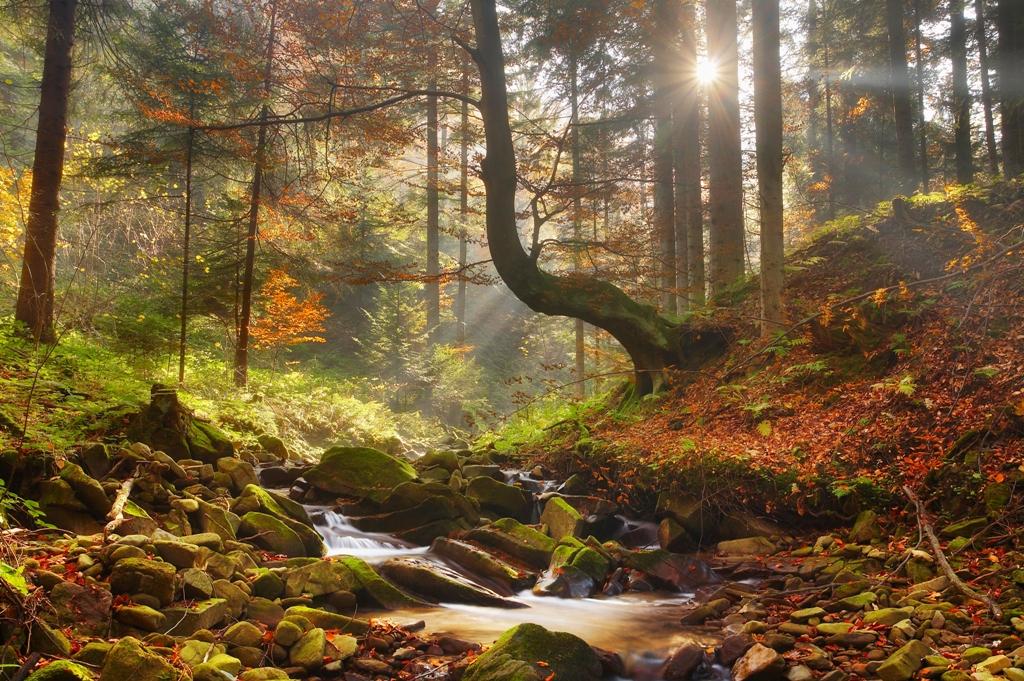 Wiśnicko-Lipnicki Park Krajobrazowy 3