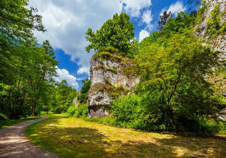 Wiśnicko-Lipnicki Park Krajobrazowy