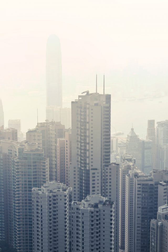 skora-a-smog